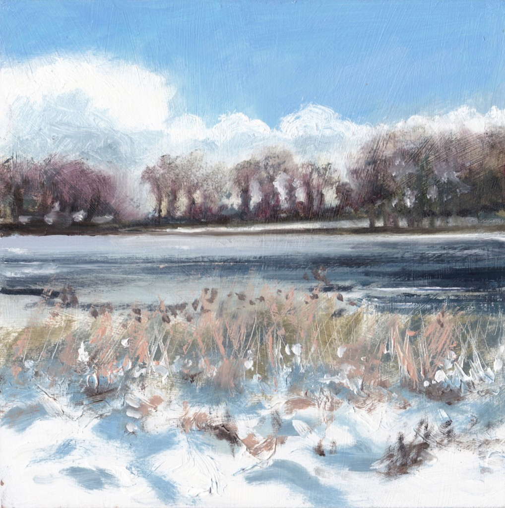 snow at blickling lake
