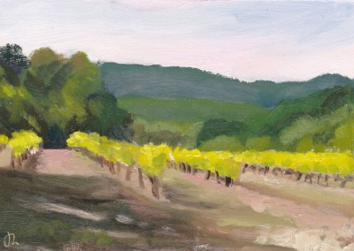 Vines Early Morning Provence
